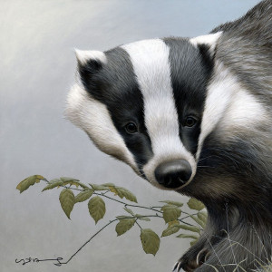 badger - british wildlife series - board with slip