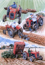 A Day In The Life Of A 35 - Massey Ferguson
