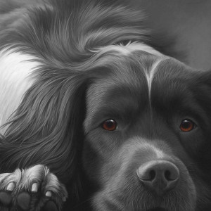 dog tired series - english springer - print