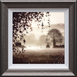 Enchanted Day - Framed