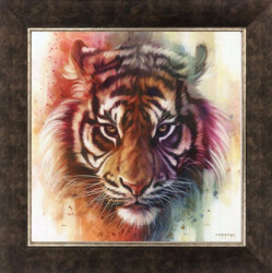 Eye Of The Tiger - On Canvas - Framed