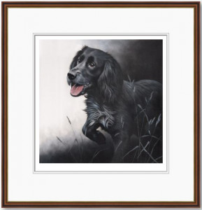 field sports - cocker spaniel  - framed