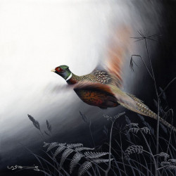 In Flight - Pheasant - Original
