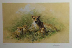 Lioness And Cubs - Black Framed