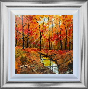 Looking On The Bright Side - Original - Framed Box Canvas