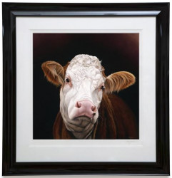 Madge - Pedigree Simmental Cow - Framed