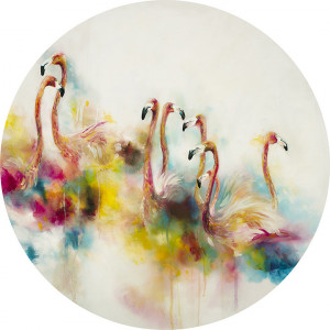 plumage (flamingos) (large)  - mounted