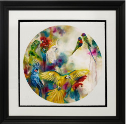 Pretty Polly - Parrots & Parakeets (Large) - Framed