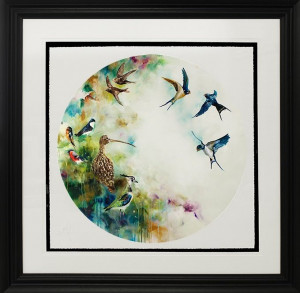 solstice - swifts - (small)  - framed