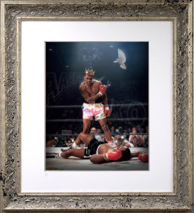 Sting Like A Bee - Lenticular Silver - Silver - Framed
