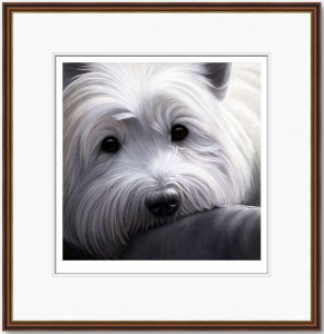 dog tired series - west highland terrier  - framed