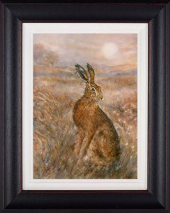 moonlight hare  - framed