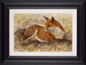 red fox waiting  - framed