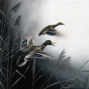 in flight - mallard ducks - canvas with slip