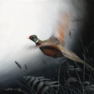 in flight - pheasant - canvas with slip
