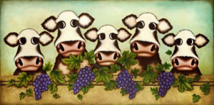 herd it through the grapevine - box canvas