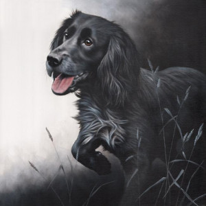 field sports - cocker spaniel - print only