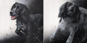 field sports - cocker & spaniel, pair () - box canvas