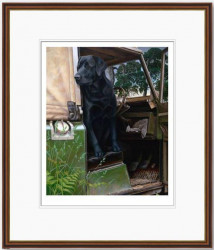 In The Driving Seat - Framed