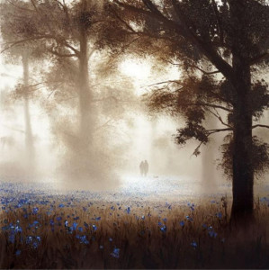 bluebell dawn - board only