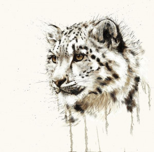 Snow Leopard - Box Canvas