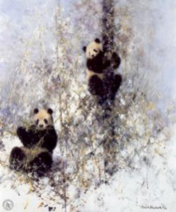 winter in wolong - print only