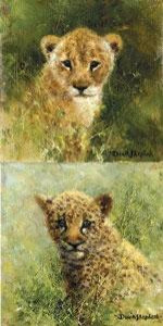 Lion & Leopard Cubs - Mini Collection - Mounted