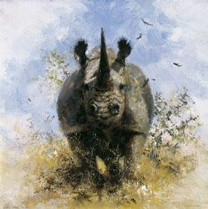 Black Rhino - Cameo Collection - Mounted