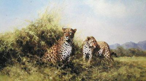 Leopards - Print only