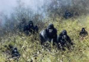 In The Mists Of Rwanda - Gorilla - Print only