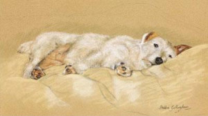 jack russell - print