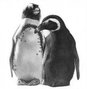 just the two of us - penguins - mounted