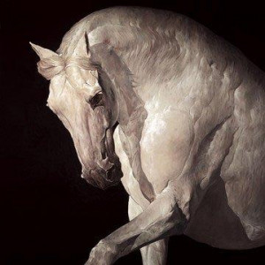 equus - board only