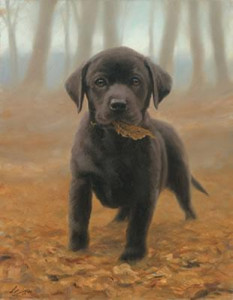 Puppy Leaves - Black Labrador Pup - Mounted