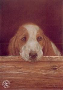 only the lonely (basset hound) - mounted