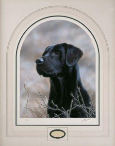 Classic Breed Black Labrador - Mounted