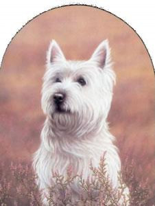 Classic Breed Westie - Mounted