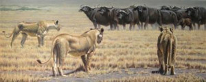 The Standoff  - Lionesses - Print only