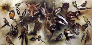 british wildlife - print