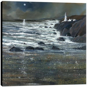 moonlit shore - box canvas