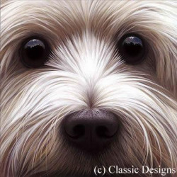 Larger Than Life - Westie