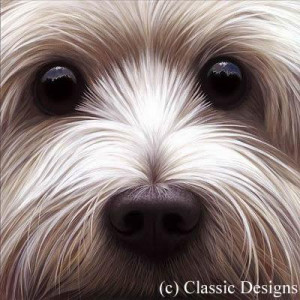 larger than life - westie - framed
