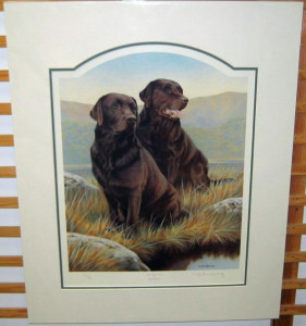 hot chocolate - chocolate labradors - mounted