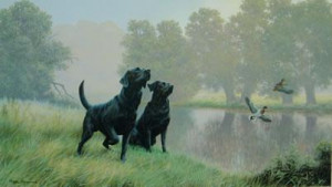watersports - black labradors - mounted