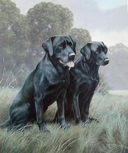 black labradors - mounted