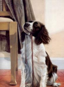 anticipation - springer spaniel - mounted