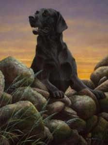 game boy - black labrador - print