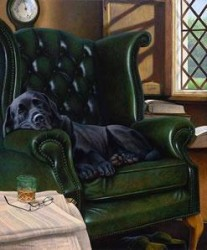 Executive Stress & Remarque of your Dog