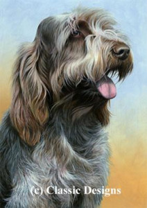 just dogs - brown roan italian spinone ii - print