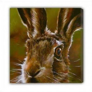 hare (canvas) - box canvas